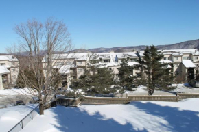 Pinnacle Condominiums Killington