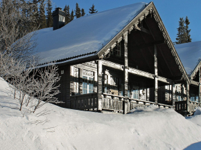 Cottage Rjukan for 8 guests